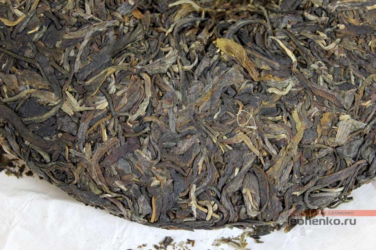 Гу Шу шен пуэр от Ботаника, блинчик чая