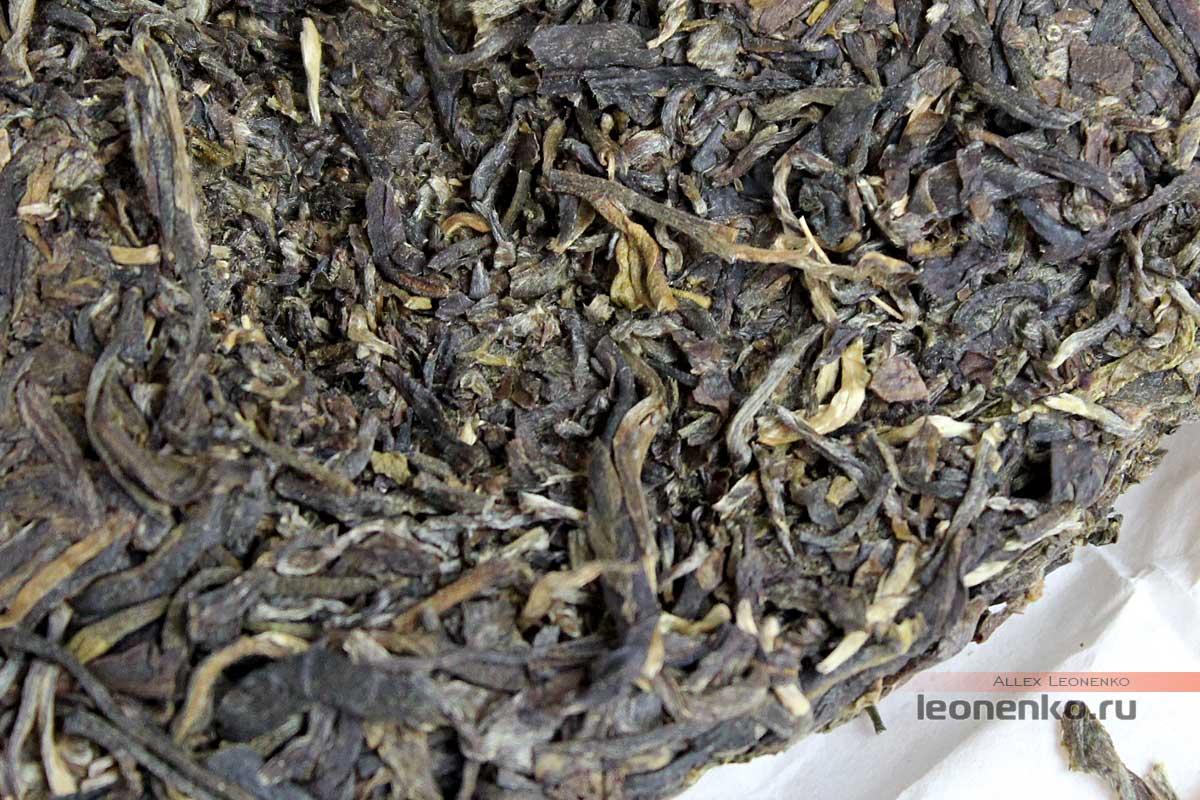 Гу Шу шен пуэр от Ботаника, блинчик чая внутри