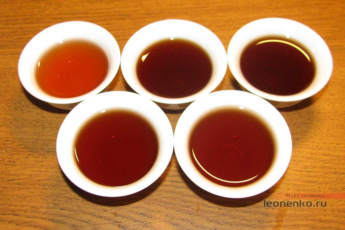 Шу Пуэр Caicheng Сян Фэн Чжэ Юнь Ючан – Бесконечный звук ветра. (向风者韵悠长)  - готовый чай