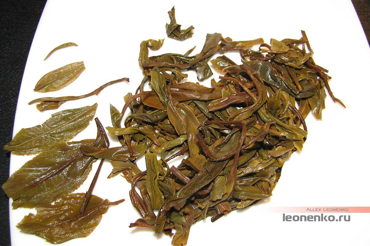 Шен Пуэр с горы Буланшань - спитой лист