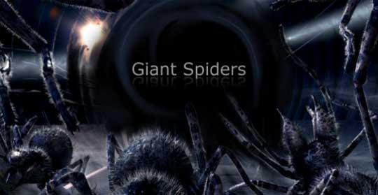Гигантские пауки