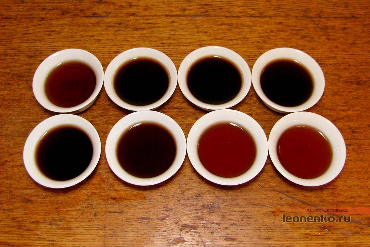 Туо-Близнецы от Ботаника - Шу пуэр Цзинь Ча приготовленный чай