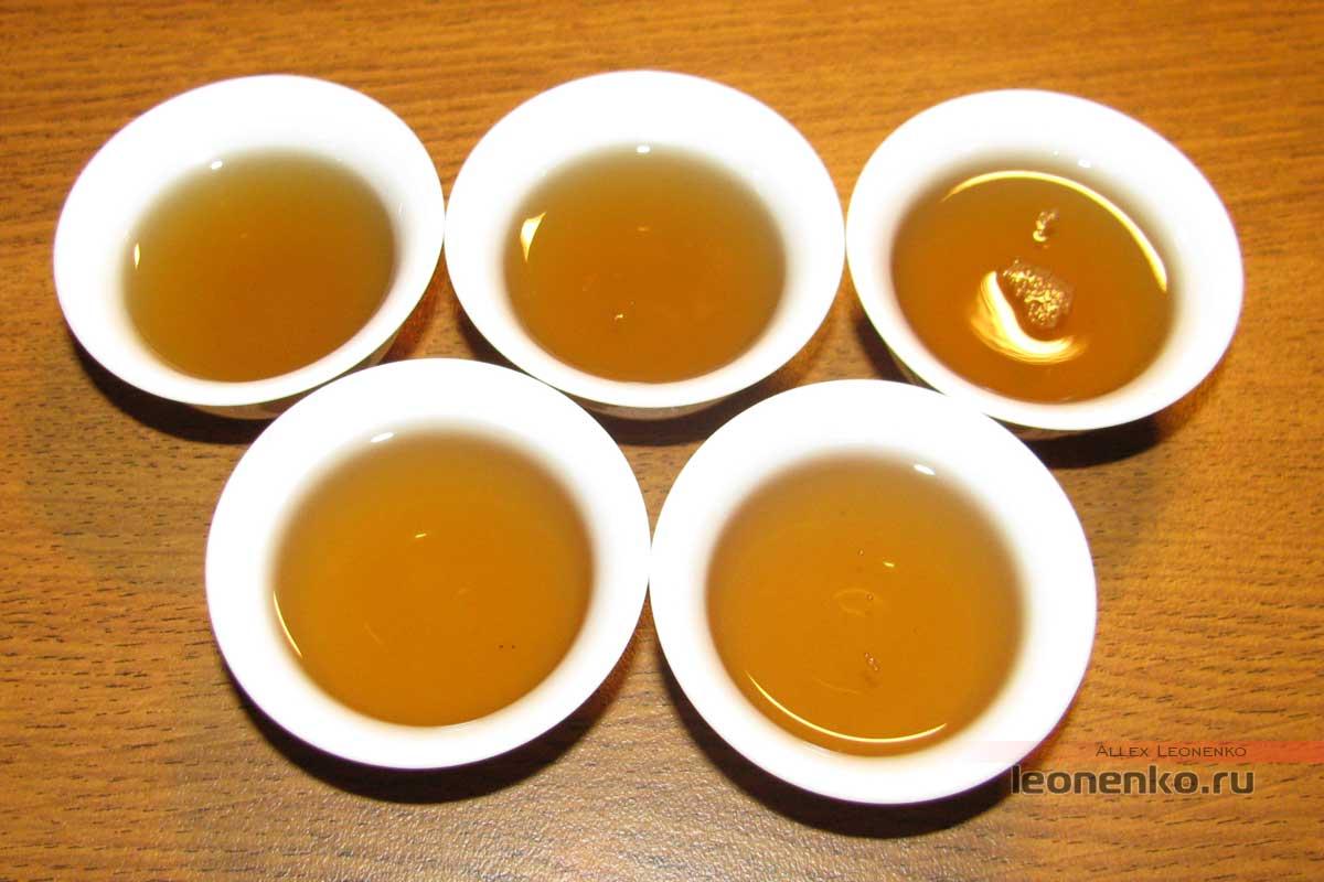 Caicheng Фиолетовый шен пуэр Цзыци Дунлай Чачжуань (紫气东来茶砖)- готовый чай
