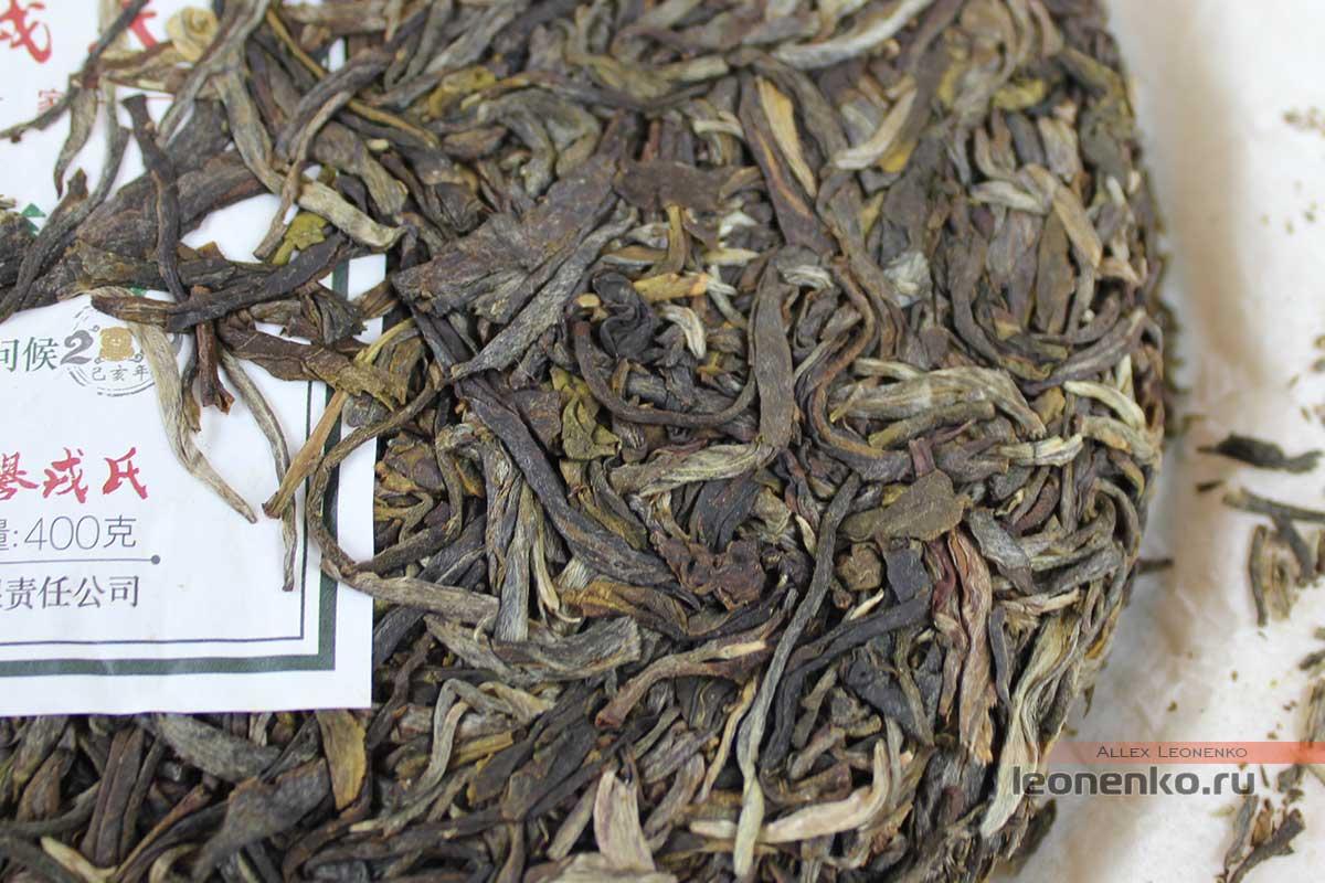 Мэнку Чунь Цзянь «Весенние Пики», чайный блин крупно